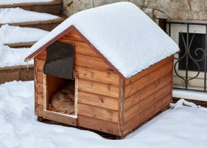Dog Kennel Covers