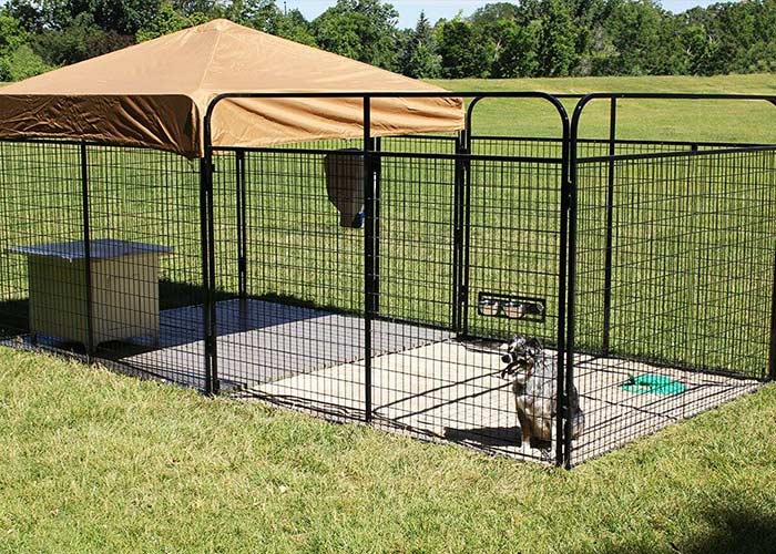 Large Outdoor Dog Kennel